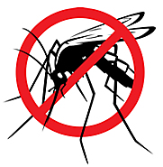 Mosquito Fun Facts - Mosquito Magnet
