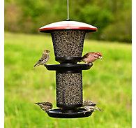 NO/NO® Multi-Seed Wild Bird Feeder