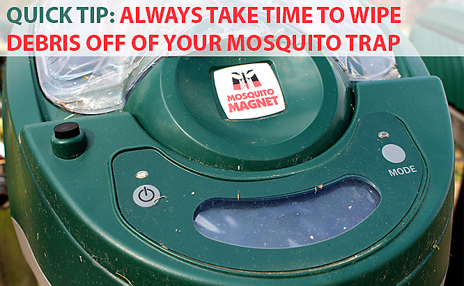 Mosquito Magnet startup tips