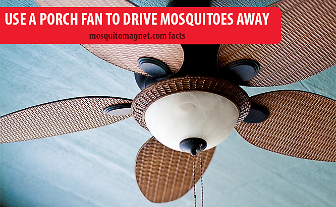 landscaping for mosquitoes use fans to drive mosquitoes away