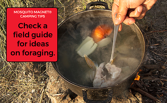 Camping Survival Guide: The Worst-Case Scenarios and How to Handle Them