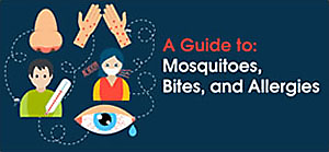 Guide to Mosquito Allergies