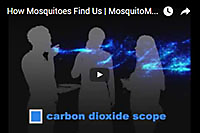 How Mosquitoes Find Us