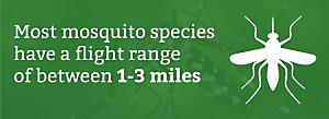mosquito-range