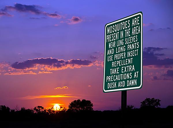 West Nile virus, mosquito season, mosquito bites, preventing mosquito bites