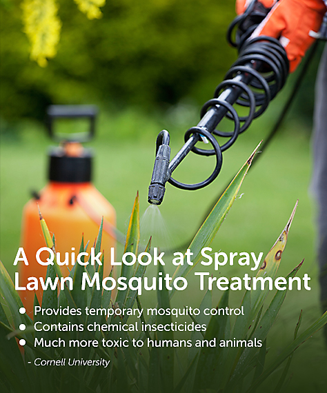 Lawn Mosquito Treatment