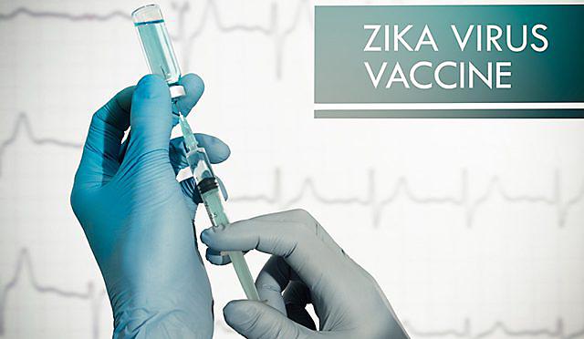 Zika Virus Vaccine
