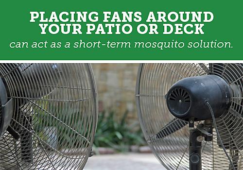Backyard Mosquito Control Guide