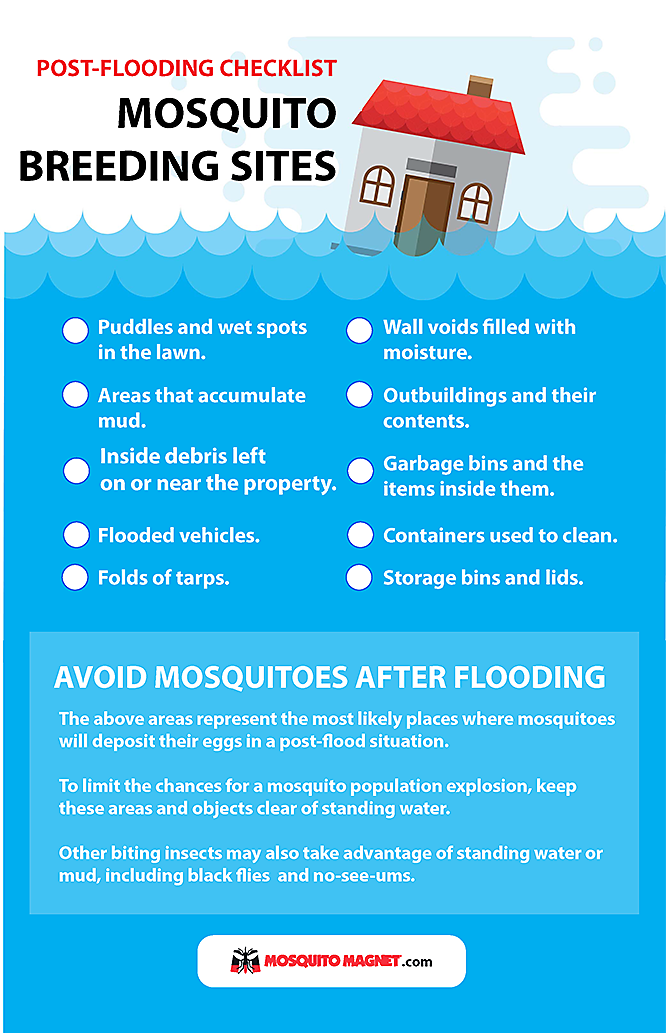 Mosquito Problems After Floods