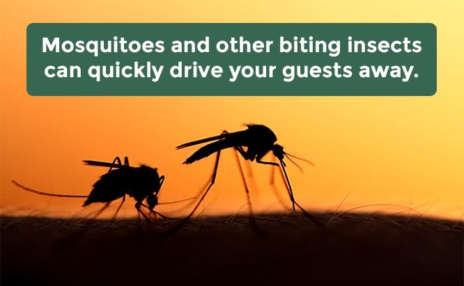 khu nghỉ mát kiểm soát muỗi