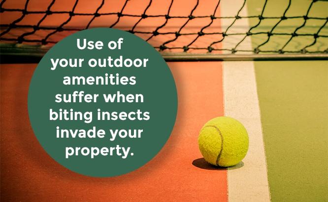 sân thể thao kiểm soát muỗi